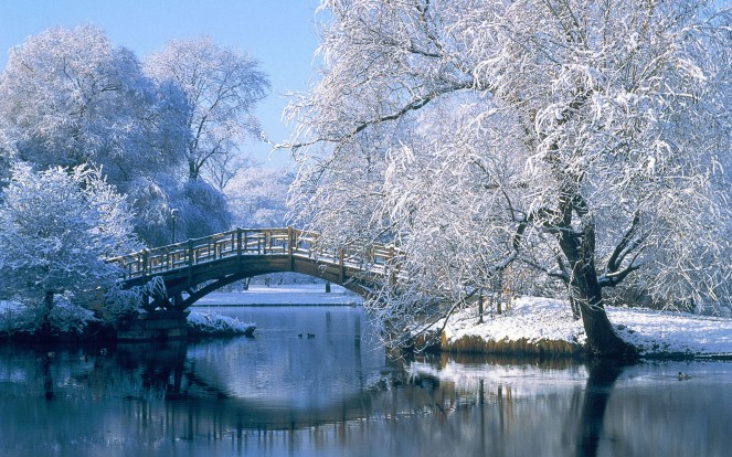Bridge over a pond in the winter, Johannapark, Leipzig, Germany